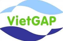 VietGAP Certification
